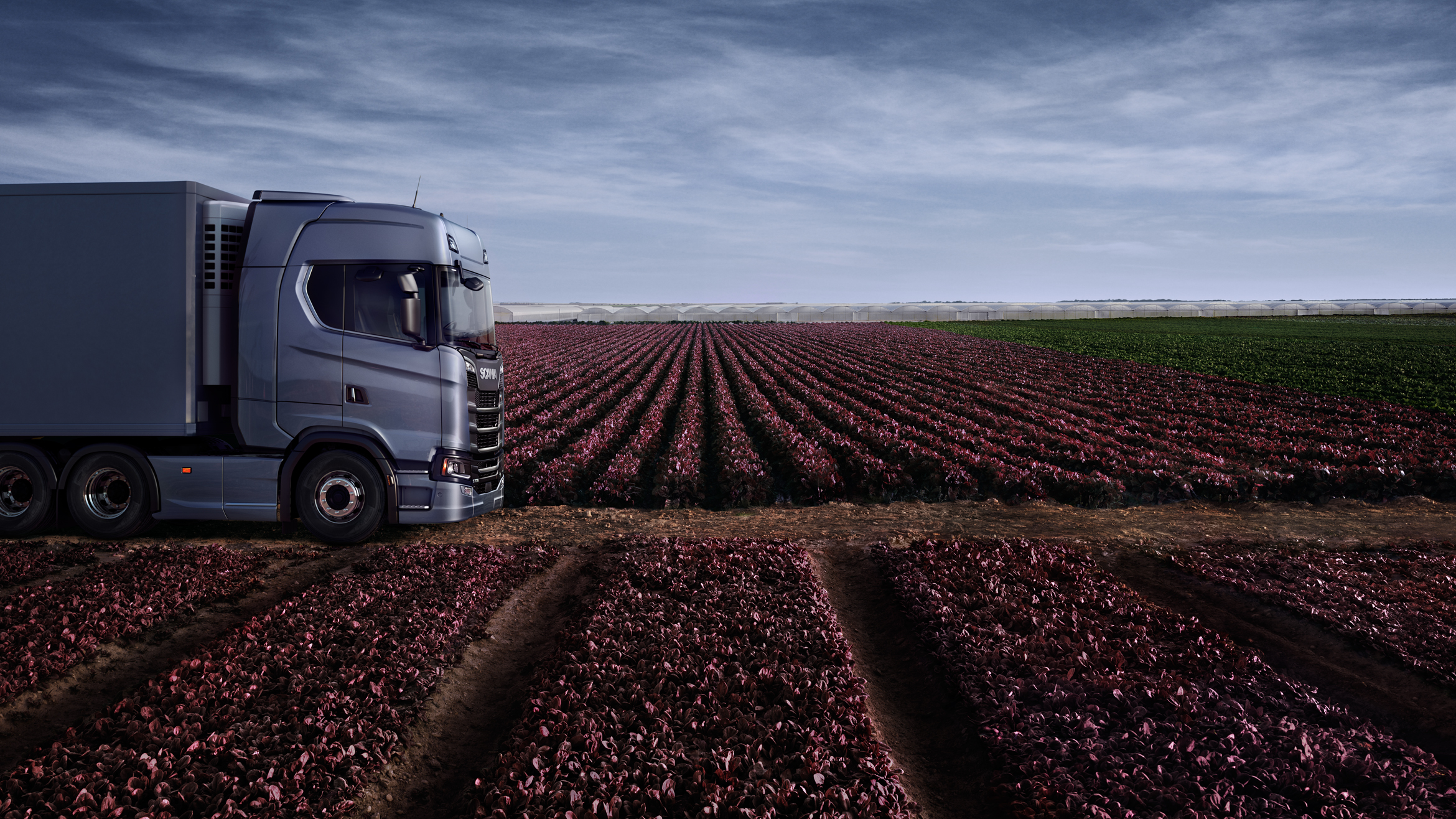 A Scania truck side on in a field