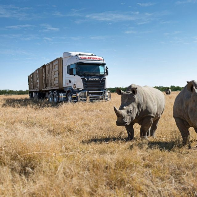 Scania   Scania South Africa